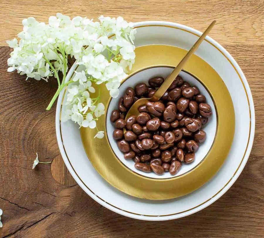 cranberries-vollmilchschokolade-moodbild