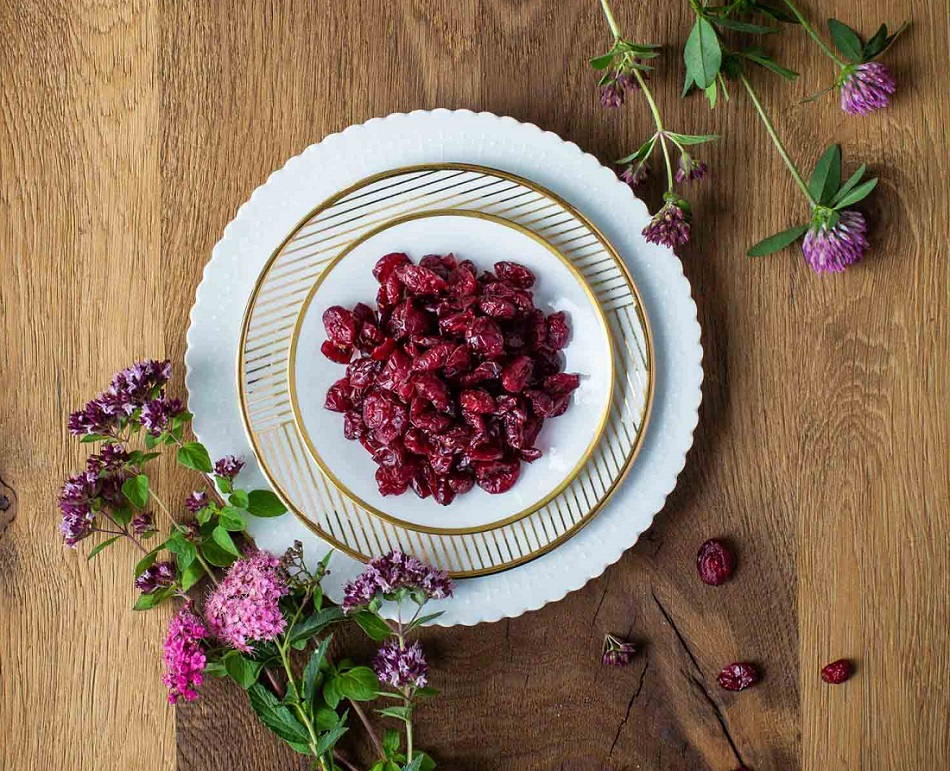 cranberries-anansaftkonzentrat-moodbild